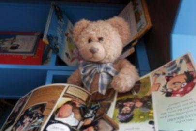Teddy bear book sleep over