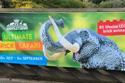 Knowsley Safari Park Educate Magazine Lego