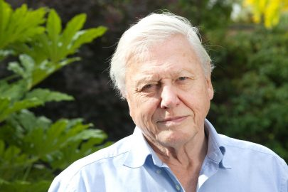 FDW7WY Sir David Attenborough, English broadcaster and naturalist, at his home in Richmond, Borough of Richmond upon Thames, England UK