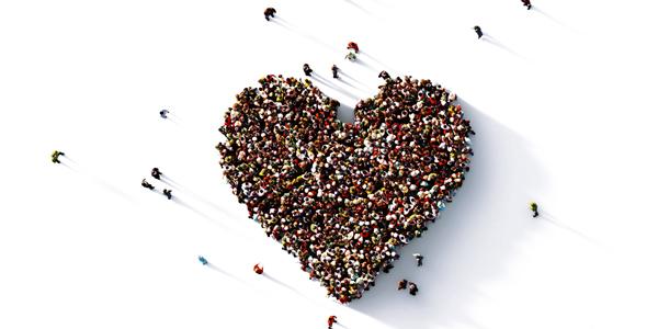 Championing Governance - the heart of organisational improvement