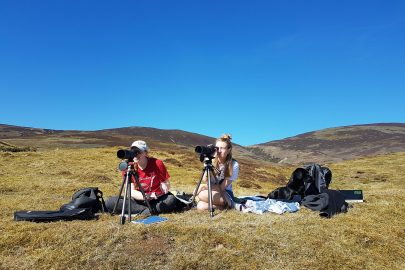 GWCT Students surveying wildlife in Scotland
